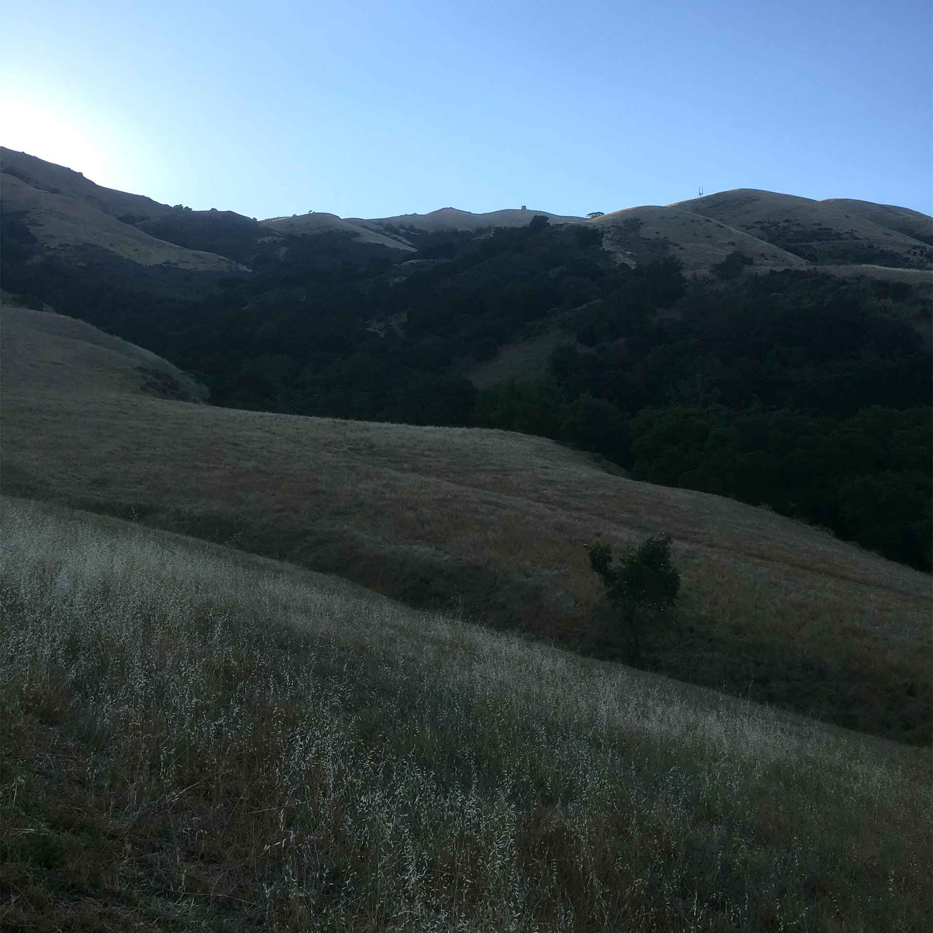 Photos from To Mission Peak 3