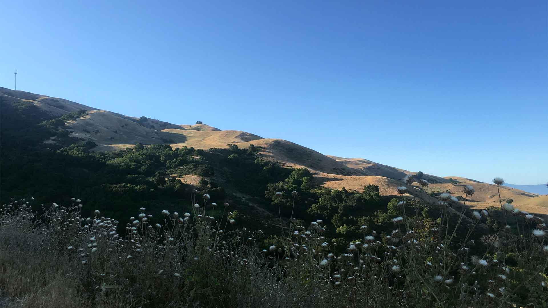 Photos from To Mission Peak 10