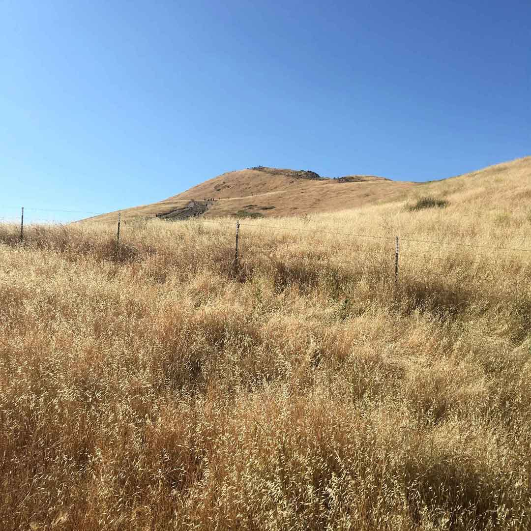Photos from To Mission Peak 27