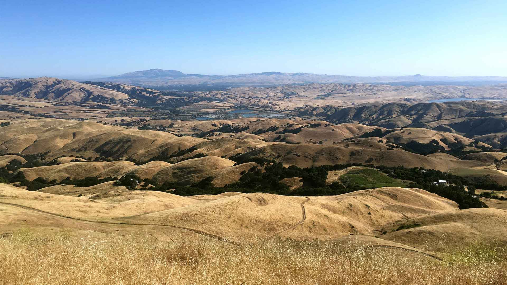 Photos from To Mission Peak 31