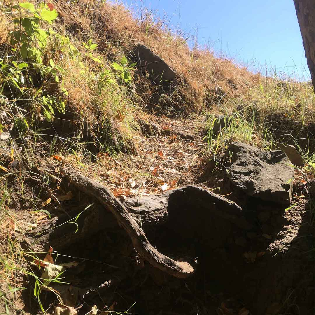 Photos from To Mission Peak 39