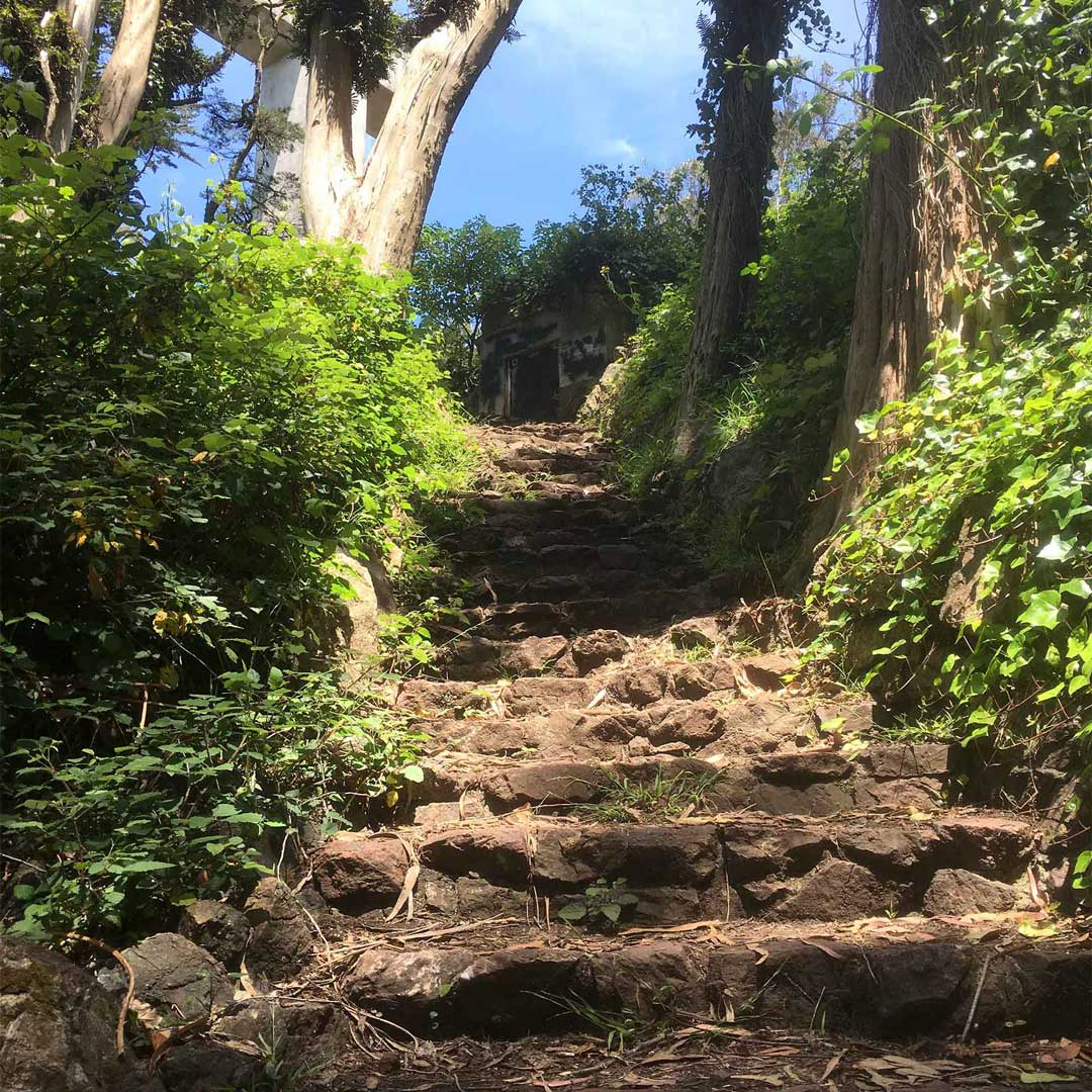 Photographs from Mount Davidson 0