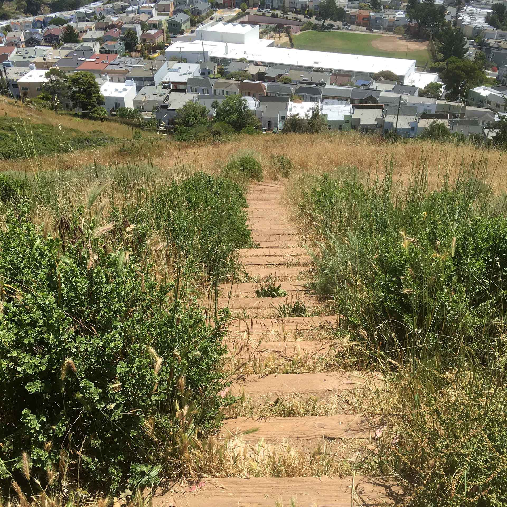 Photographs from Mount Davidson 3